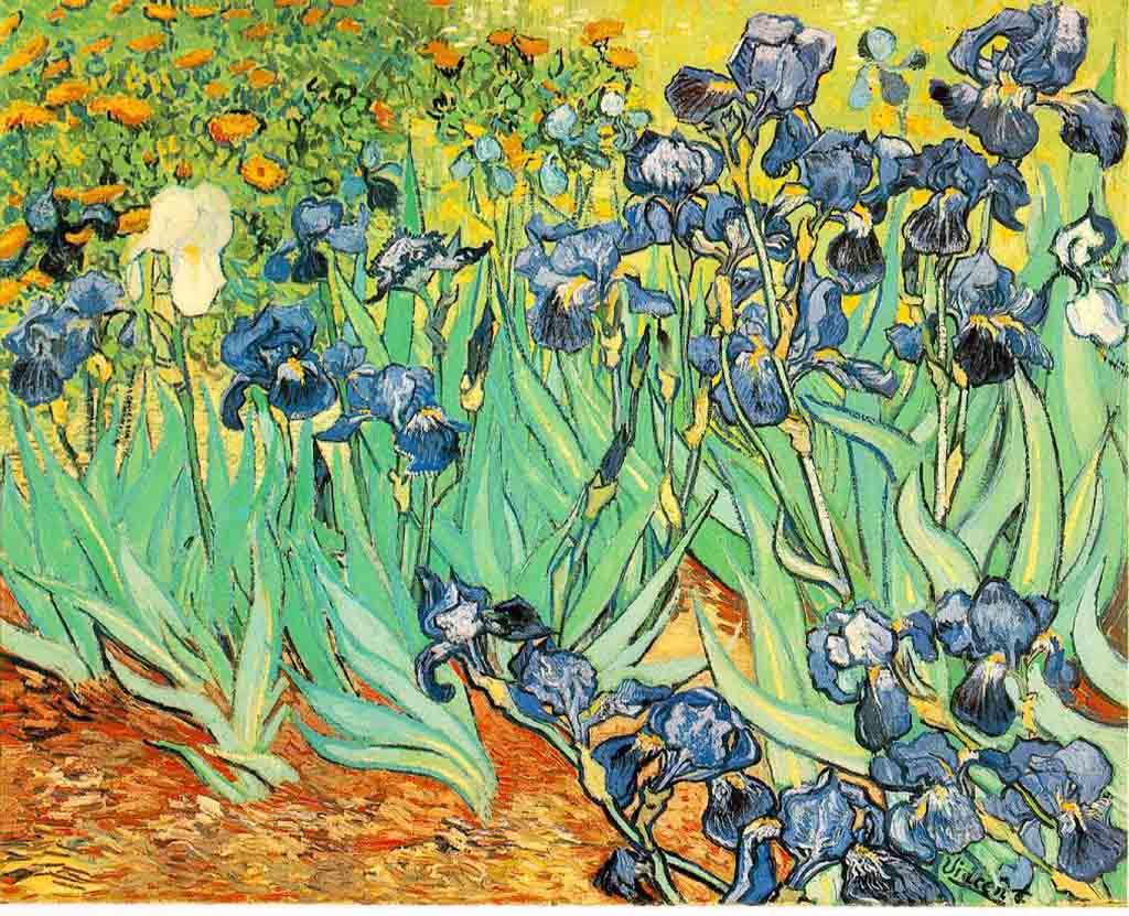 Lirios de Vincent van Gogh – Tuitearte
